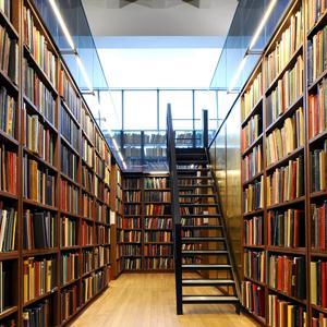 Библиотеки Шумерли